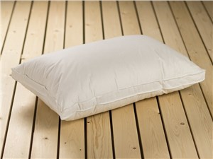 The Back Sleeper Pillow Hollowfibre
