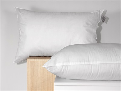The Soft Bedding Company Landlord Hollowfibre Cotton Single Pillow Pillow