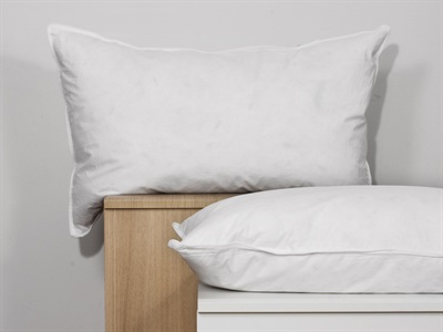 The Soft Bedding Company Landlord White Duck Feather Pillow