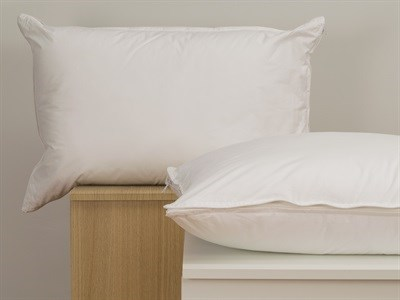 Snuggledown Core Support Memory Single Pillow Pillow
