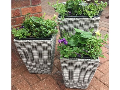 Product photograph showing Oxford Shaped Planter Set