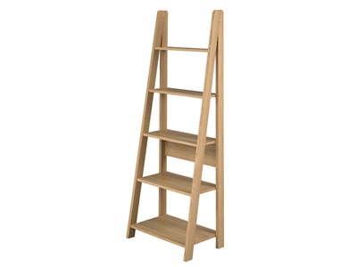 Product photograph showing Tiva Ladder Bookcase
